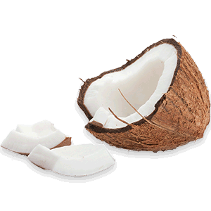 Coconut Oil Uses for Skin Care